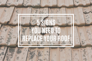 5 Signs You Need to Replace Your Roof